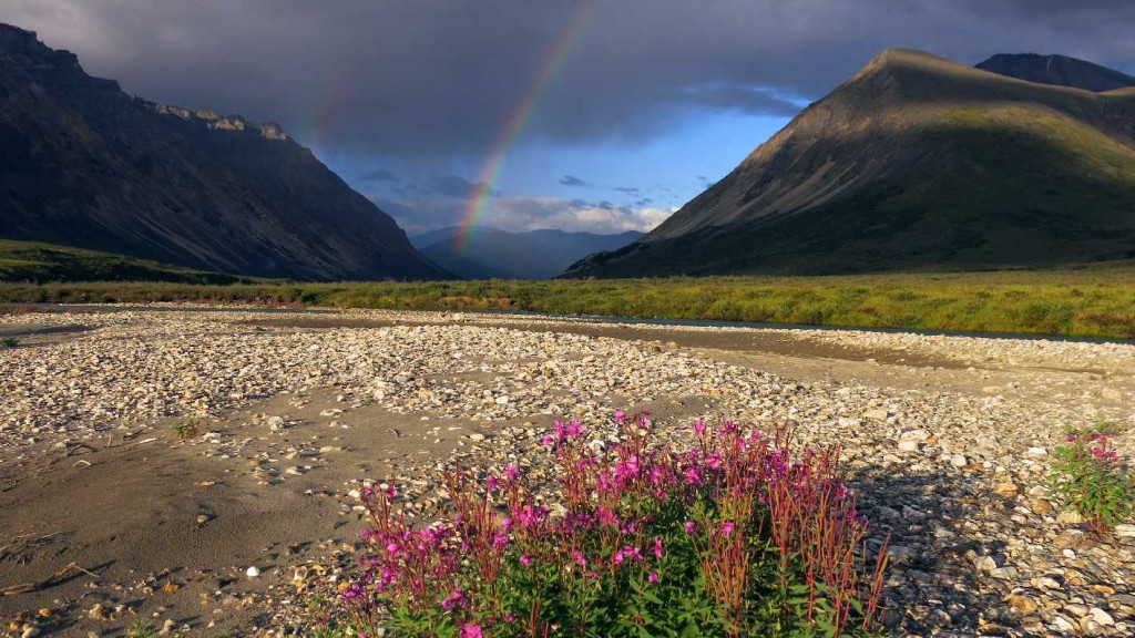 Yukon_Alaska_35_low