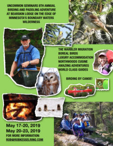 Birding in the Boundary Waters Canoe Area Wilderness, A Canoe Camping Adventure in Northern Minnesota, May 2019